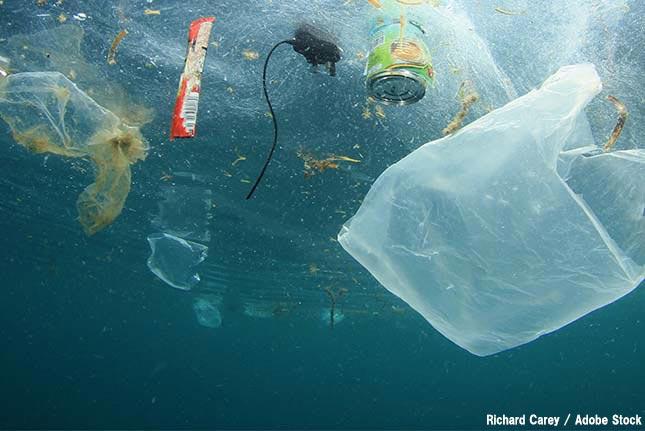 【プラスチックごみ問題入門.2】海洋ごみに対する世界の動き