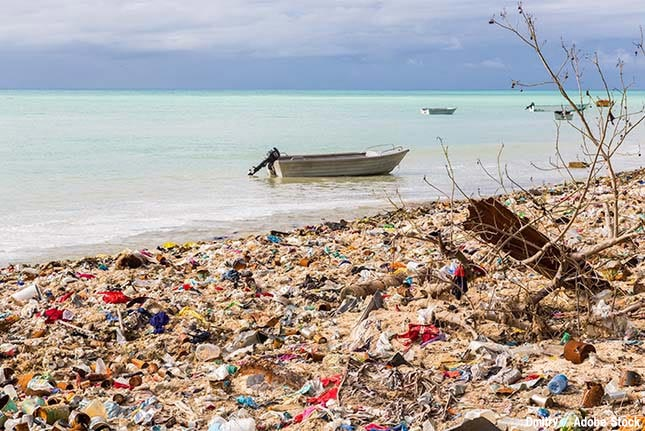【プラスチックごみ問題入門.4】海洋ごみへの日本国内の対策