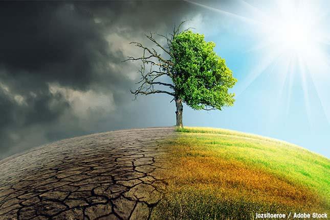 環境問題とは?どこまでが環境問題なのか