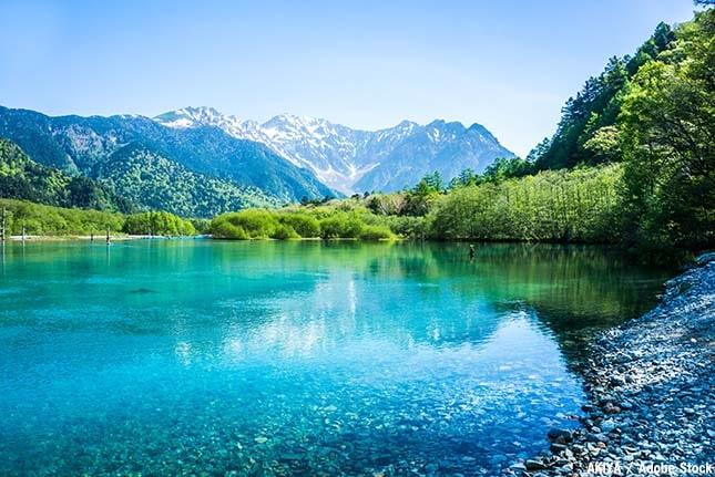 上高地のおすすめ観光スポット「大正池」
