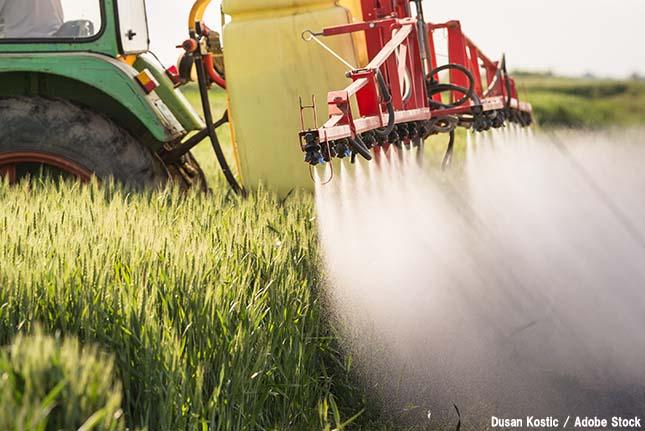 窒素が環境問題?食料生産に必要な窒素肥料の落とし穴