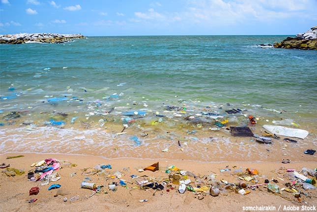 海だけじゃなかった!深海や山にも残り続けるプラスチックごみの恐怖