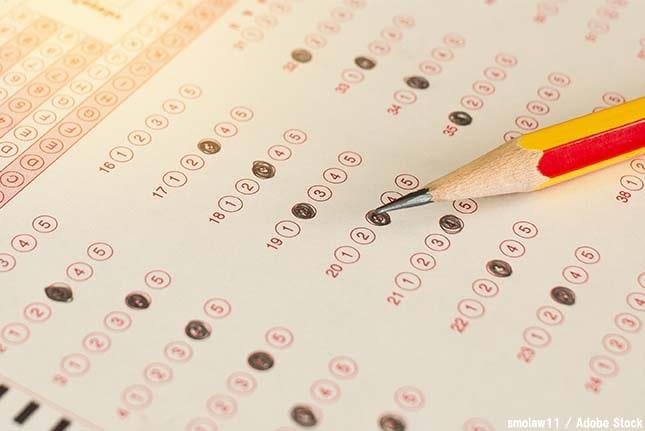 大企業が取得を推進する「eco検定」って何?勉強法やメリットも紹介