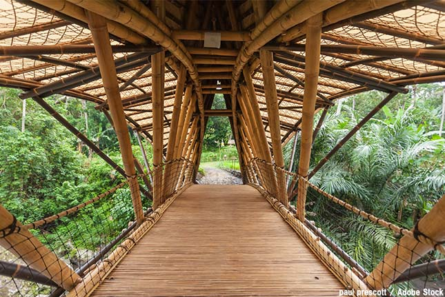 竹で建築されたバリの学校2