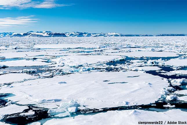 北極もプラスチックによる汚染!雪に混じる廃プラの欠片