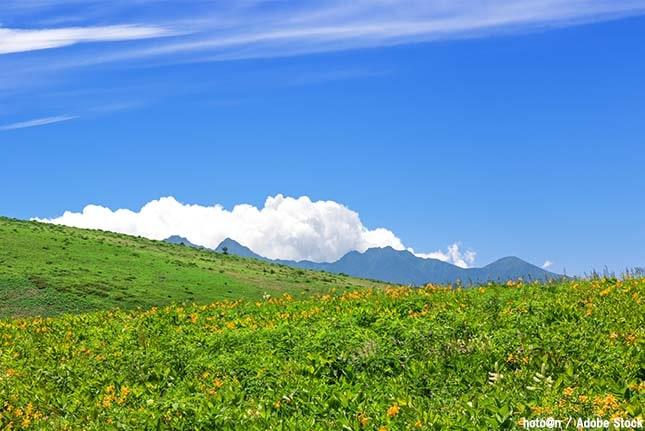 霧ヶ峰は登山も温泉も満喫できる観光地!おすすめスポットは?