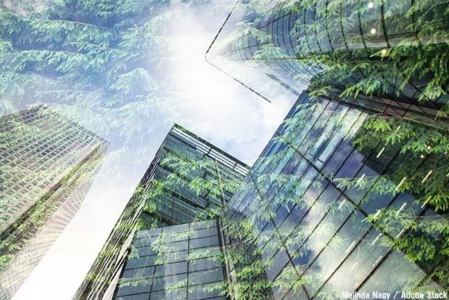 企業の環境保全活動は何のため?その理由やメリット・事例を解説!