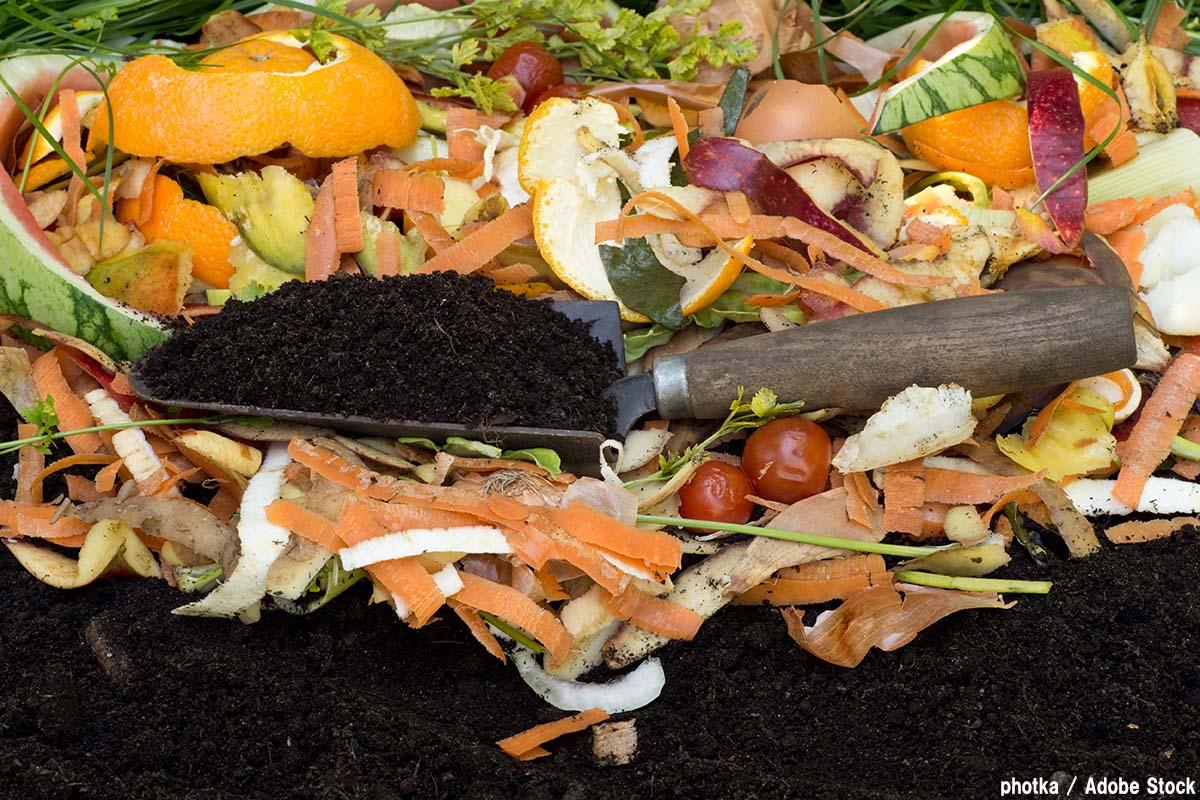 コンポストの作り方は?生ゴミを分解させて堆肥にしよう!