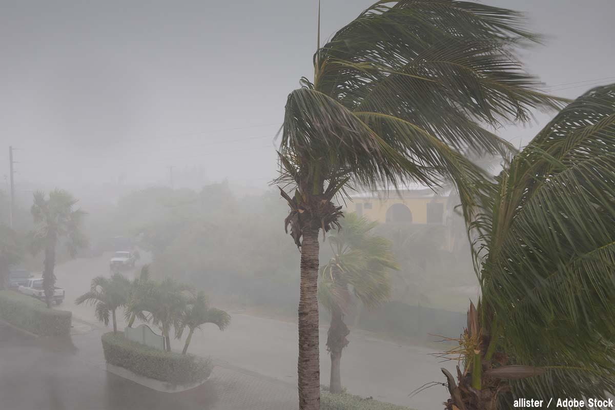 台風がきたら準備すべきものは?窓や食糧の対策を考えよう