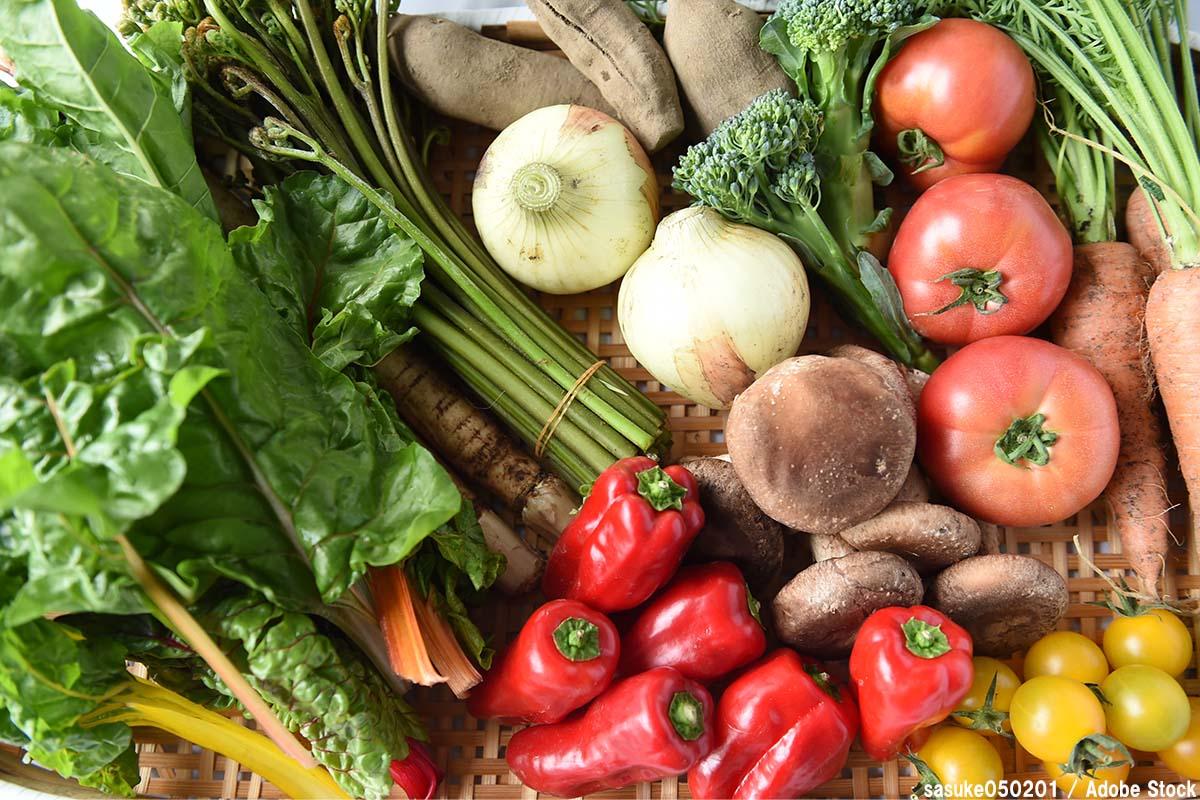 都市農業の機能は食料の供給だけではない!多面的な魅力に注目!