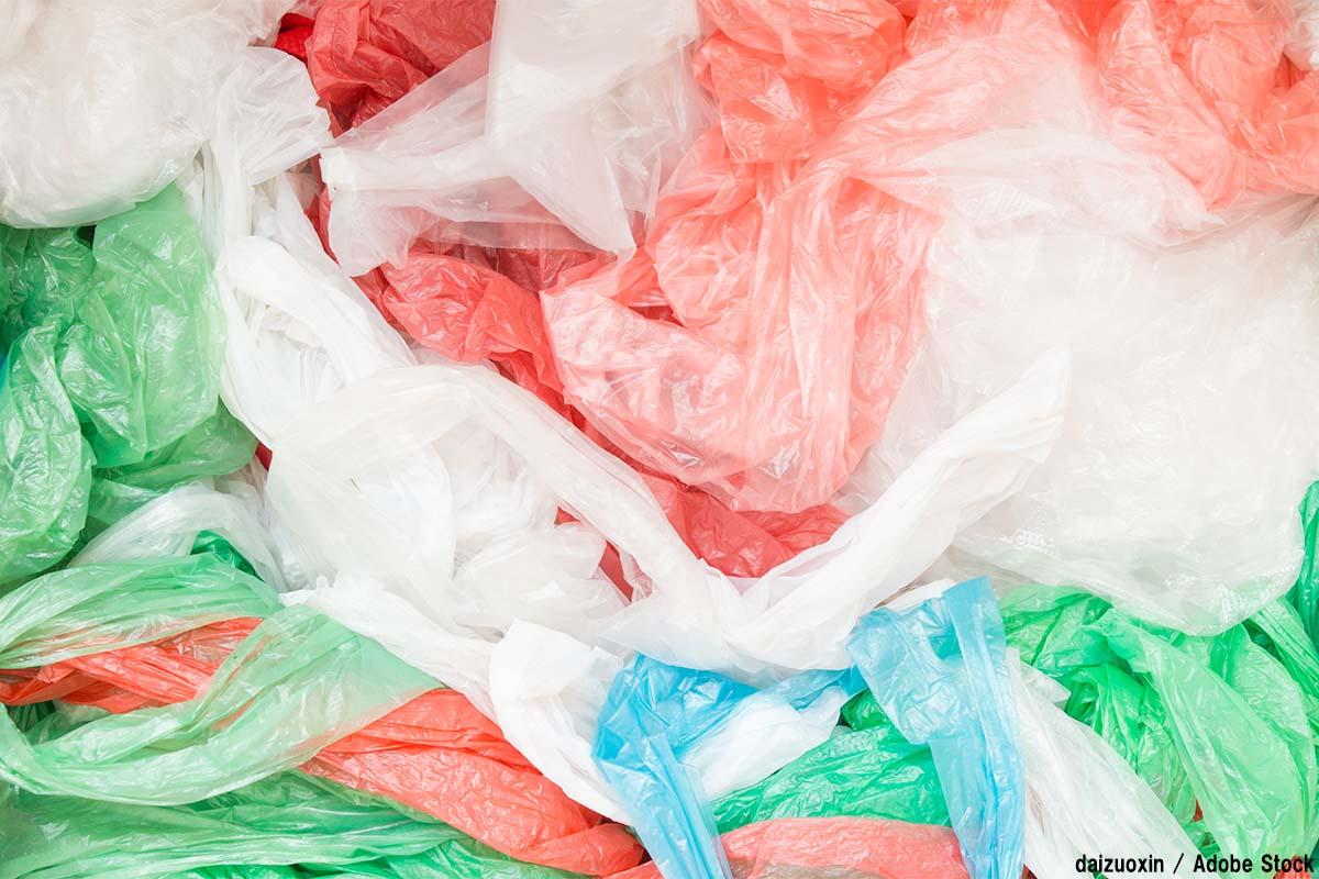 プラスチックを食べる虫が登場!効果的な処分と言えるか疑問も