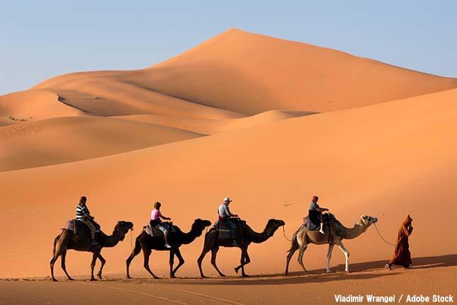 進む砂漠化の恐怖!その原因と影響とは?