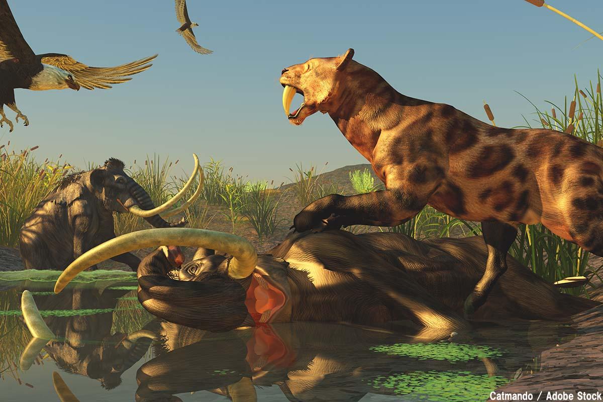 メガファウナとは?かつての巨大動物を絶滅させたのは人間か