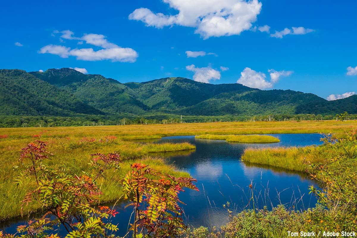 【国立公園まとめ】日本はどこにある?地域ごとの場所と特徴