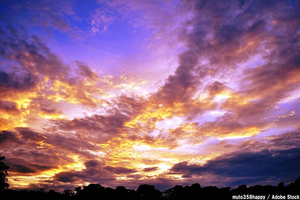 空の色が紫やピンクに?奇妙な現象の原因は何か