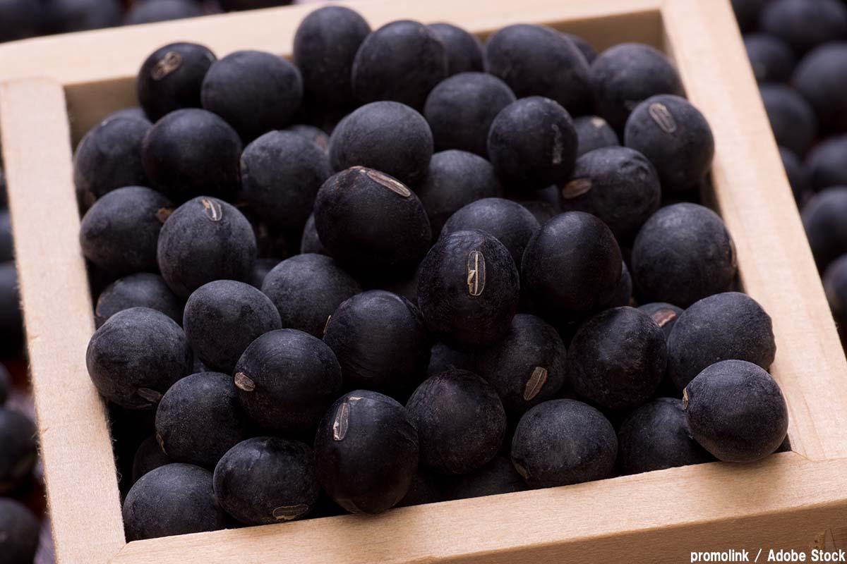 丹波の特産品である丹波黒大豆