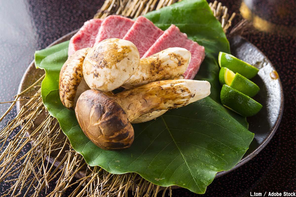 丹波の特産品である丹波松茸