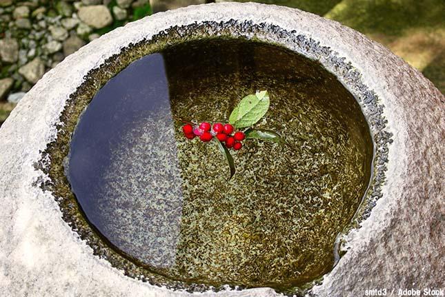 水の節約方法!ちょっとした手間を加えて実践できるエコ