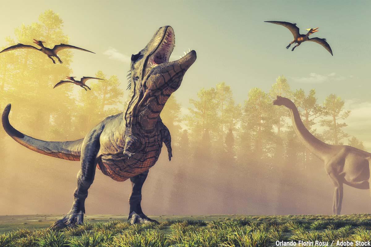 最強の恐竜は誰だ!ティラノサウルスなど猛者たちをご紹介
