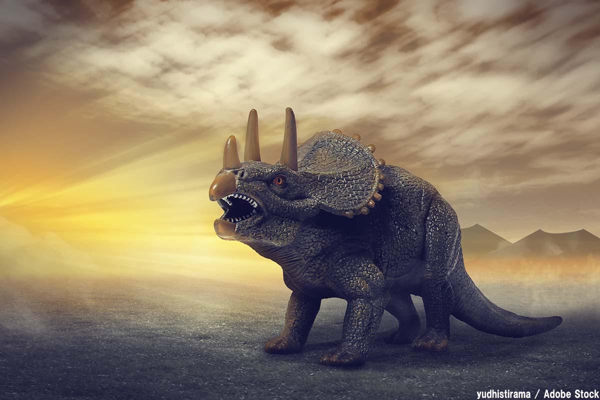 最強の恐竜候補「トリケラトプス」