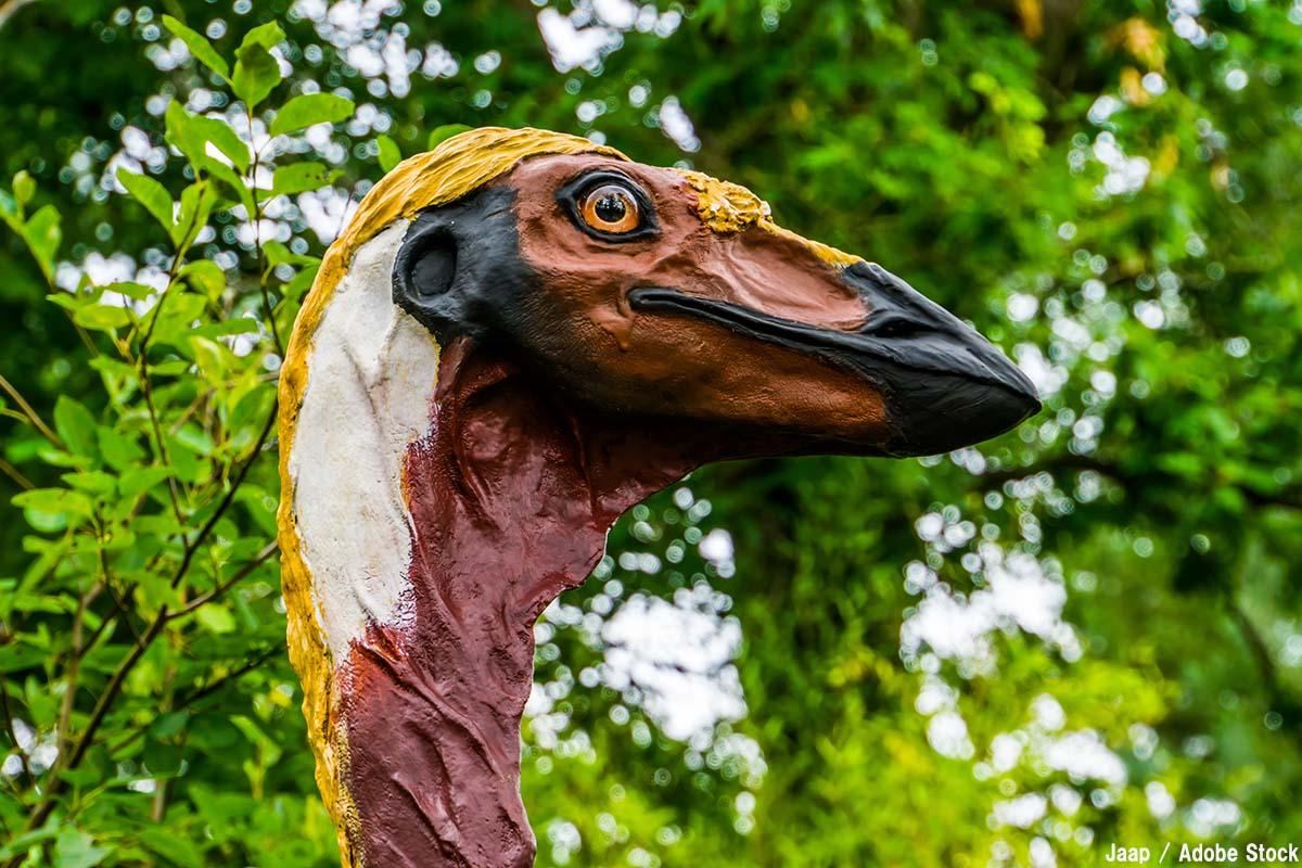 伝説の巨大鳥?史上最も重い鳥エピオルニスとは【絶滅動物シリーズ】