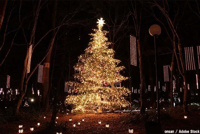 クリスマスは環境を破壊している?問題点とエコな過ごし方とは