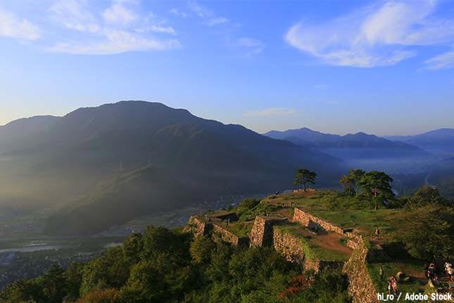 天空の城「竹田城」のシンボル一本松が枯れる!原因は観光客だった…