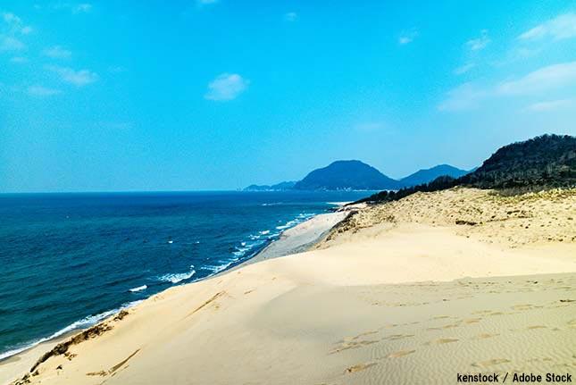 鳥取砂丘のエコツアー